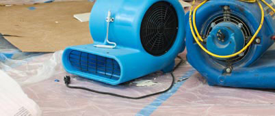 Flood & Water Damage Restoration - Mold Remediation